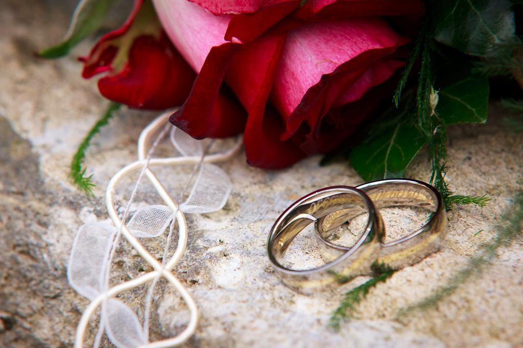 Ringe und Rose